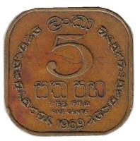 Монета 5 центов. 1969 год, Цейлон.