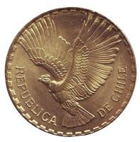 Кондор. Монета 5 чентезимо. 1964 год, Чили. aUNC.