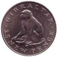 Обезьяна. Монета 25 новых пенсов. 1971 год, Гибралтар.