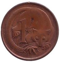 Карликовый летучий кускус. Монета 1 цент, 1970 год, Австралия.