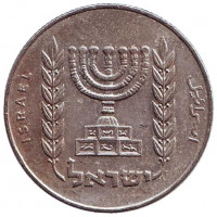 Менора (Семисвечник). Монета 1/2 лиры. 1973 год, Израиль.