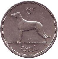 Ирландский волкодав. Монета 6 пенсов. 1968 год, Ирландия.