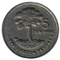 Хлопковое дерево. Монета 5 сентаво. 1990 год, Гватемала.