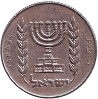 Менора (Семисвечник). Монета 1/2 лиры. 1975 год, Израиль.