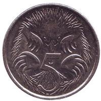 Ехидна. Монета 5 центов. 2012 год, Австралия.