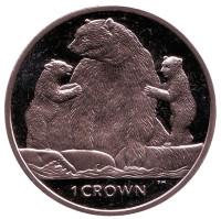Кермодский медведь. (Медведи). Монета 1 крона, 2013 год, Остров Мэн.