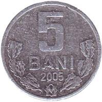 Монета 5 бани. 2005 год, Молдавия.
