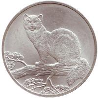 Соболь. Монета 3 рубля. 1995 год, (ММД), Россия.