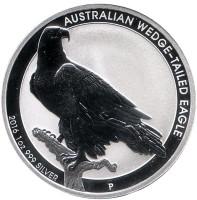 Клинохвостый орёл. Монета 1 доллар. 2016 год, Австралия.
