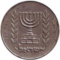 Менора (Семисвечник). Монета 1/2 лиры. 1965 год, Израиль. Из обращения.