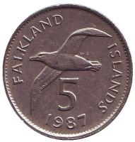 Чернобровый альбатрос. Монета 5 пенсов. 1987 год, Фолклендские острова.