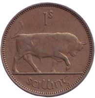 Бык. Монета 1 шиллинг. 1951 год, Ирландия.