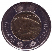 Медведь. Монета 2 доллара. 2018 год, Канада.