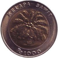 Пальма. Монета 1000 рупий, 1993 год, Индонезия. UNC.